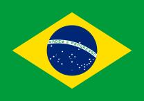 Brazilijos patirtis įveikiant su smurtą prieš moteris